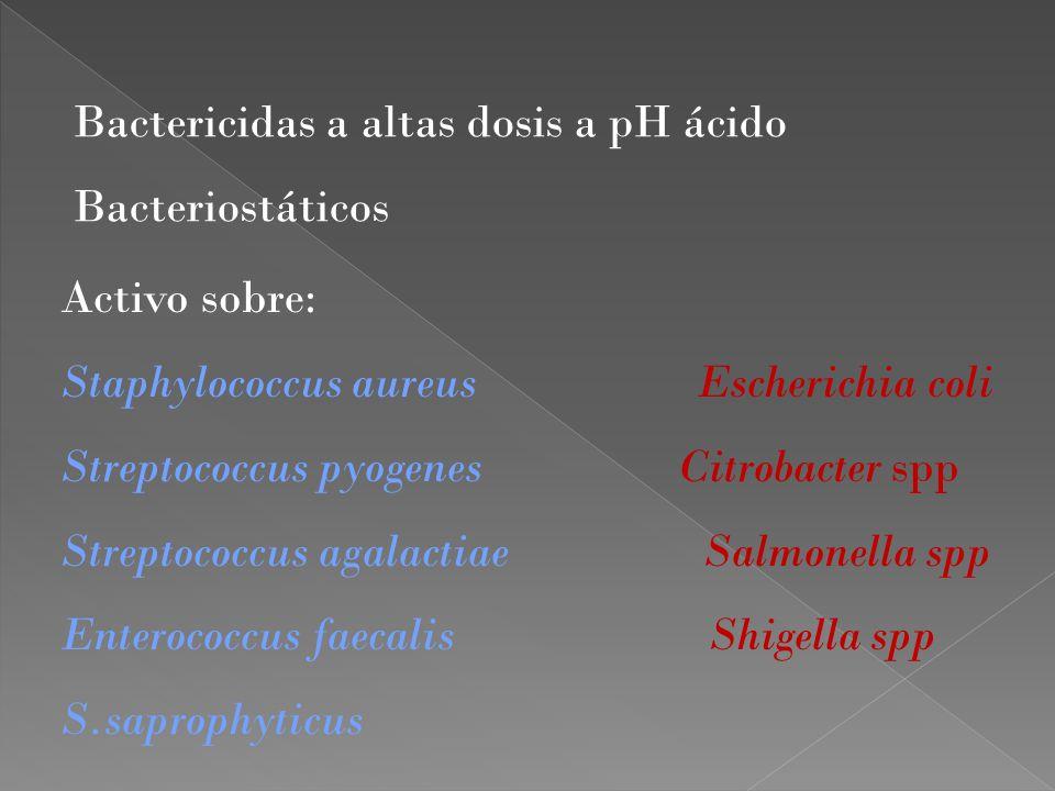 Bactericidas a altas dosis a pH ácido Bacteriostáticos Activo sobre: Staphylococcus aureus Escherichia coli Streptococcus pyogenes Citrobacter spp Str