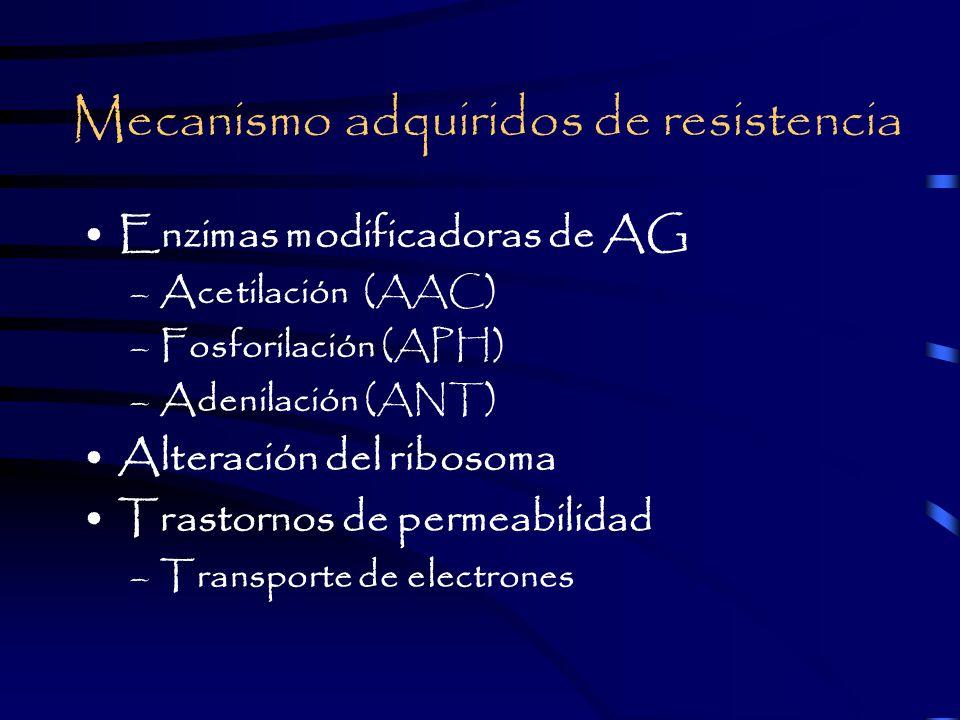 Mecanismo adquiridos de resistencia Enzimas modificadoras de AG –Acetilación (AAC) –Fosforilación (APH) –Adenilación (ANT) Alteración del ribosoma Trastornos de permeabilidad –Transporte de electrones