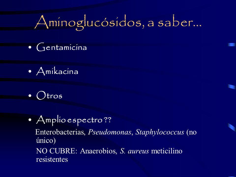 Aminoglucósidos, a saber… Gentamicina Amikacina Otros Amplio espectro ?.