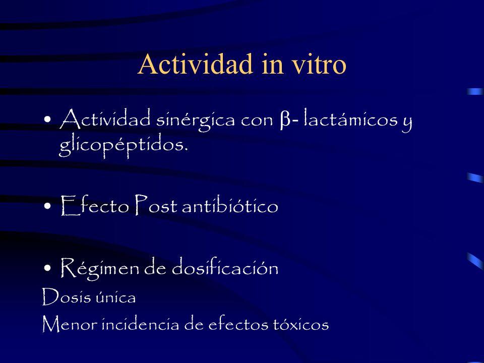 Actividad in vitro Actividad sinérgica con - lactámicos y glicopéptidos.