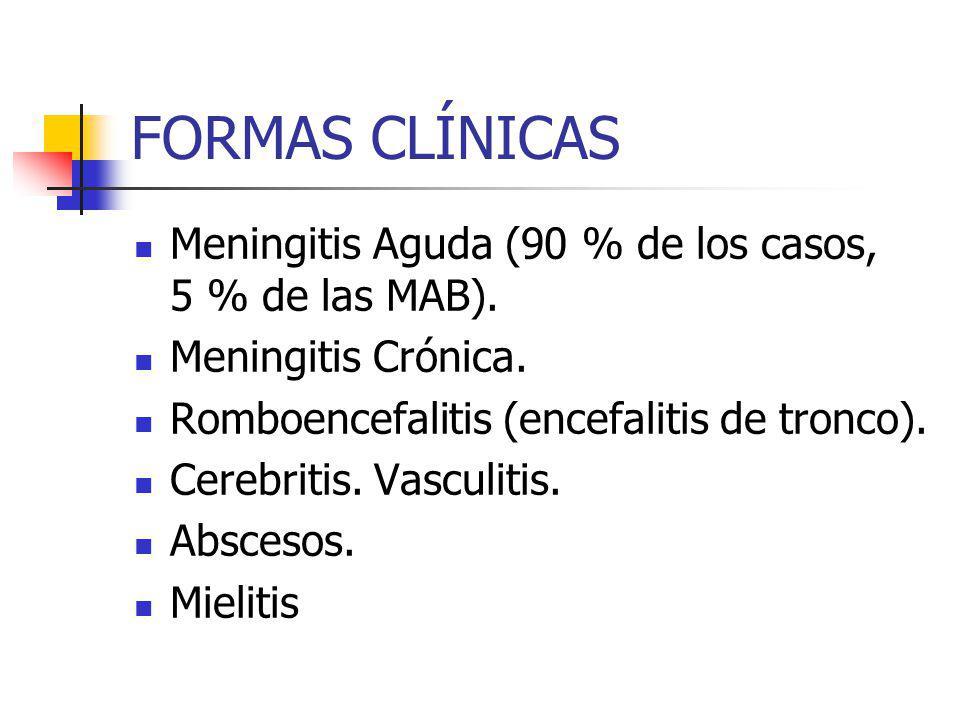 FORMAS CLÍNICAS Meningitis Aguda (90 % de los casos, 5 % de las MAB). Meningitis Crónica. Romboencefalitis (encefalitis de tronco). Cerebritis. Vascul