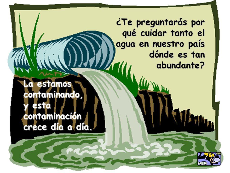 La estamos contaminando, y esta contaminación crece día a día. ¿Te preguntarás por qué cuidar tanto el agua en nuestro país dónde es tan abundante?