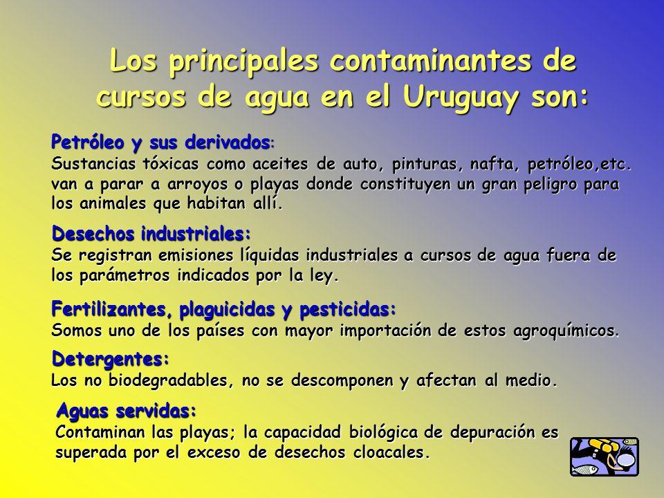 Los principales contaminantes de cursos de agua en el Uruguay son: Petróleo y sus derivados : Sustancias tóxicas como aceites de auto, pinturas, nafta