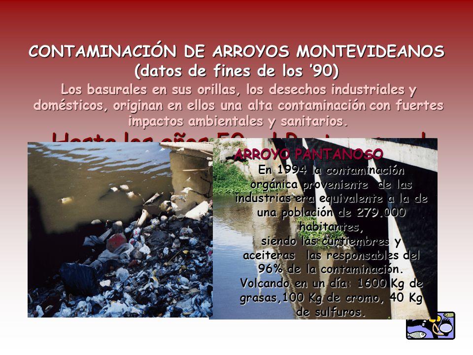 CONTAMINACIÓN DE ARROYOS MONTEVIDEANOS (datos de fines de los 90) Hasta los años 50, el Pantanoso, el Miguelete y el Carrasco eran arroyos donde los montevideanos se podían bañar, navegar, y pescar abundantemente.