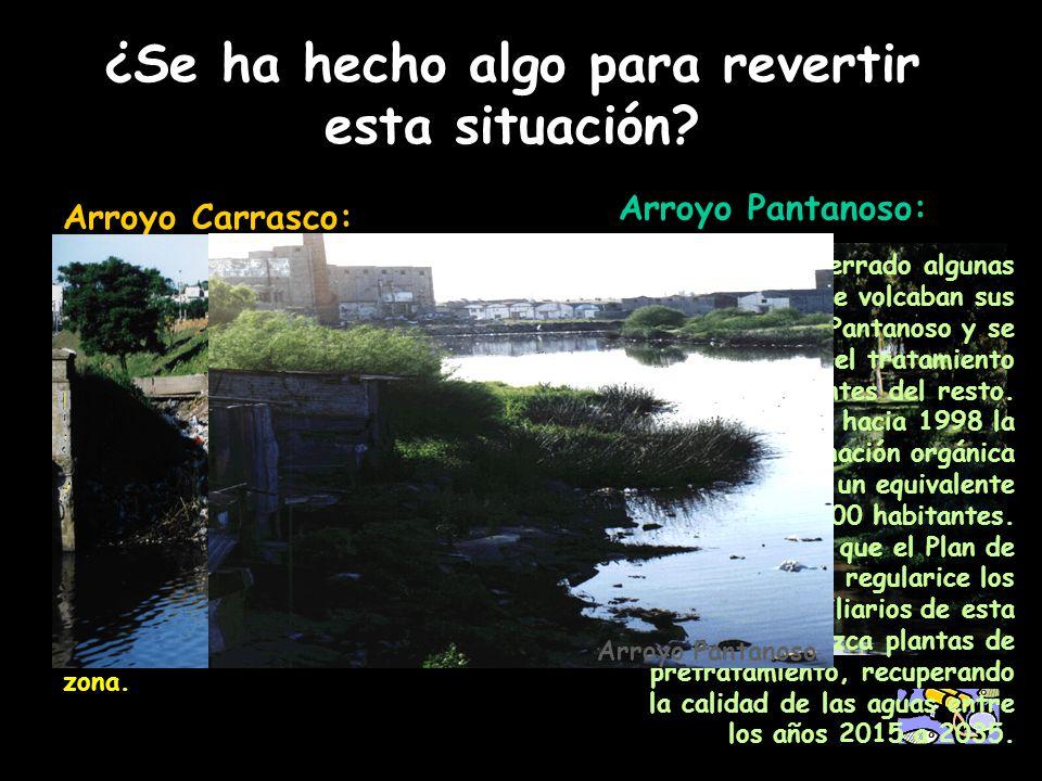 ¿Se ha hecho algo para revertir esta situación? Arroyo Carrasco: Desde 1990 la situación ha mejorado porque se desvió el agua de dos cañadas afluentes