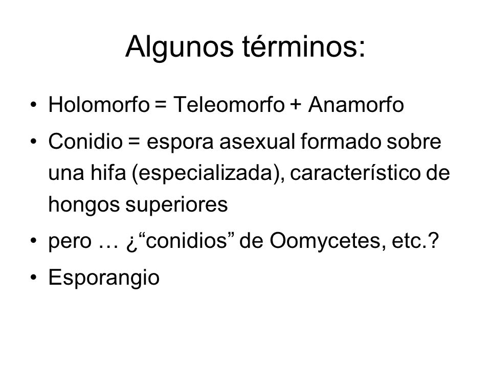 Algunos términos: Holomorfo = Teleomorfo + Anamorfo Conidio = espora asexual formado sobre una hifa (especializada), característico de hongos superiores pero … ¿conidios de Oomycetes, etc..