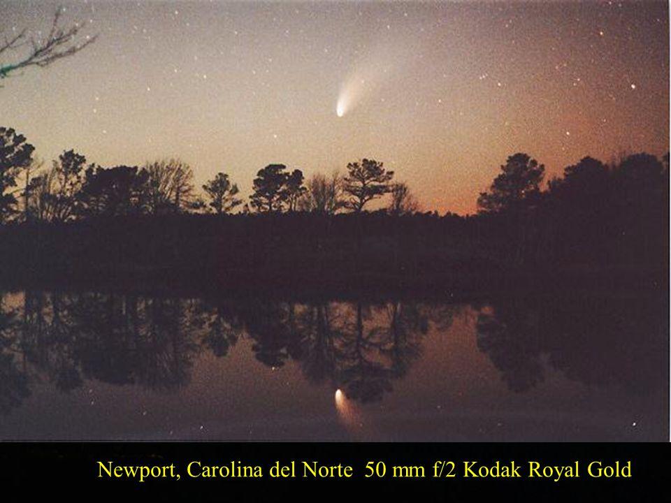 Newport, Carolina del Norte 50 mm f/2 Kodak Royal Gold