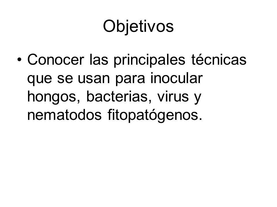 Objetivos Conocer las principales técnicas que se usan para inocular hongos, bacterias, virus y nematodos fitopatógenos.
