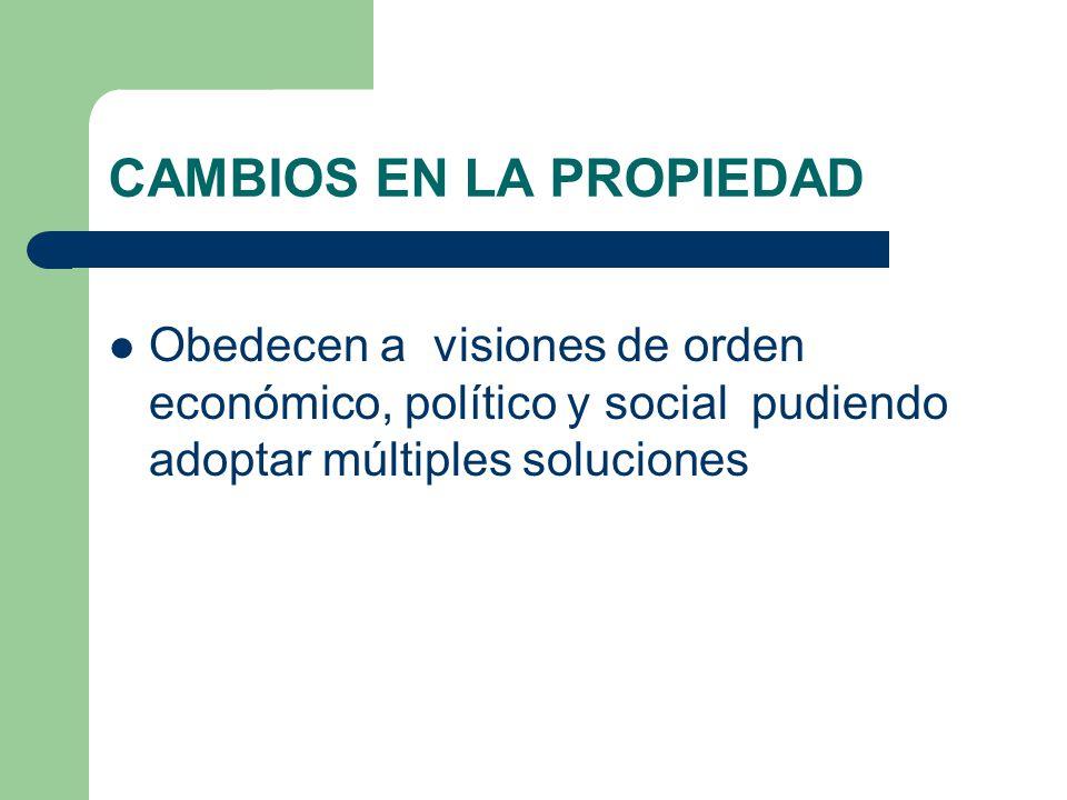 CAMBIOS EN LA PROPIEDAD Obedecen a visiones de orden económico, político y social pudiendo adoptar múltiples soluciones