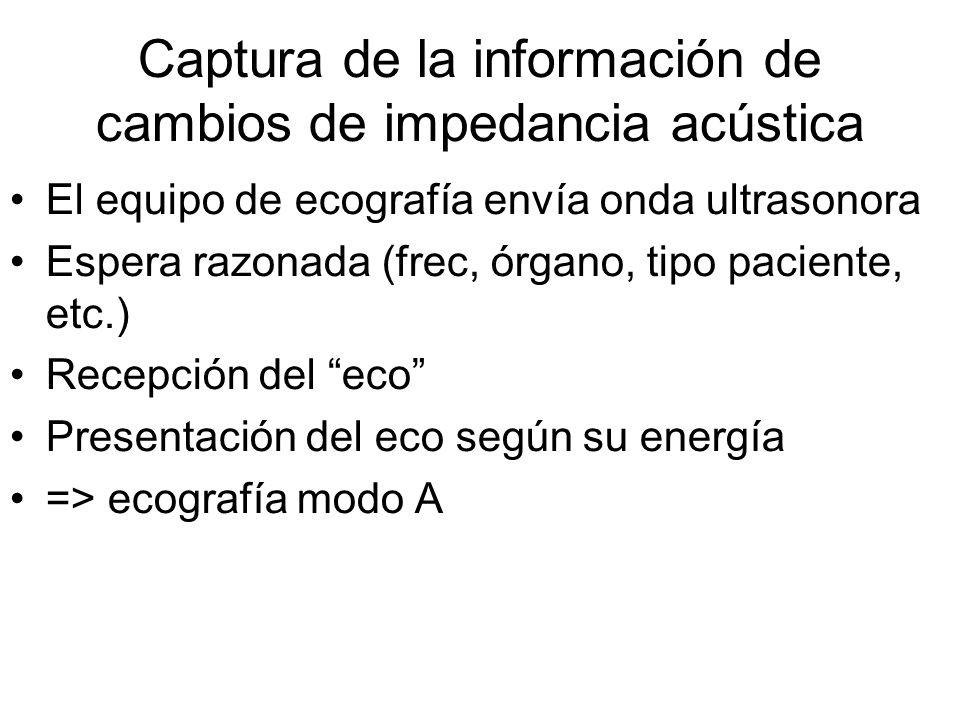 Captura de la información de cambios de impedancia acústica El equipo de ecografía envía onda ultrasonora Espera razonada (frec, órgano, tipo paciente