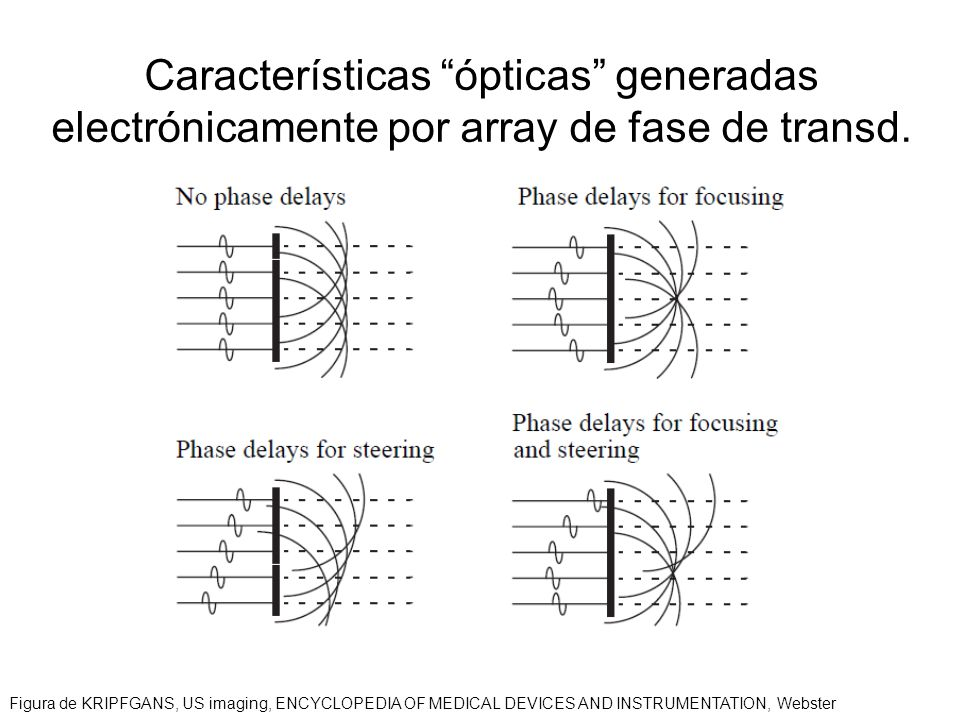 Características ópticas generadas electrónicamente por array de fase de transd. Figura de KRIPFGANS, US imaging, ENCYCLOPEDIA OF MEDICAL DEVICES AND I