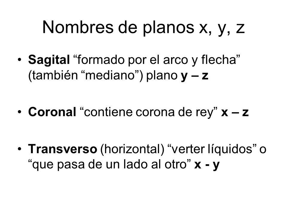 Nombres de planos x, y, z Sagital formado por el arco y flecha (también mediano) plano y – z Coronal contiene corona de rey x – z Transverso (horizont