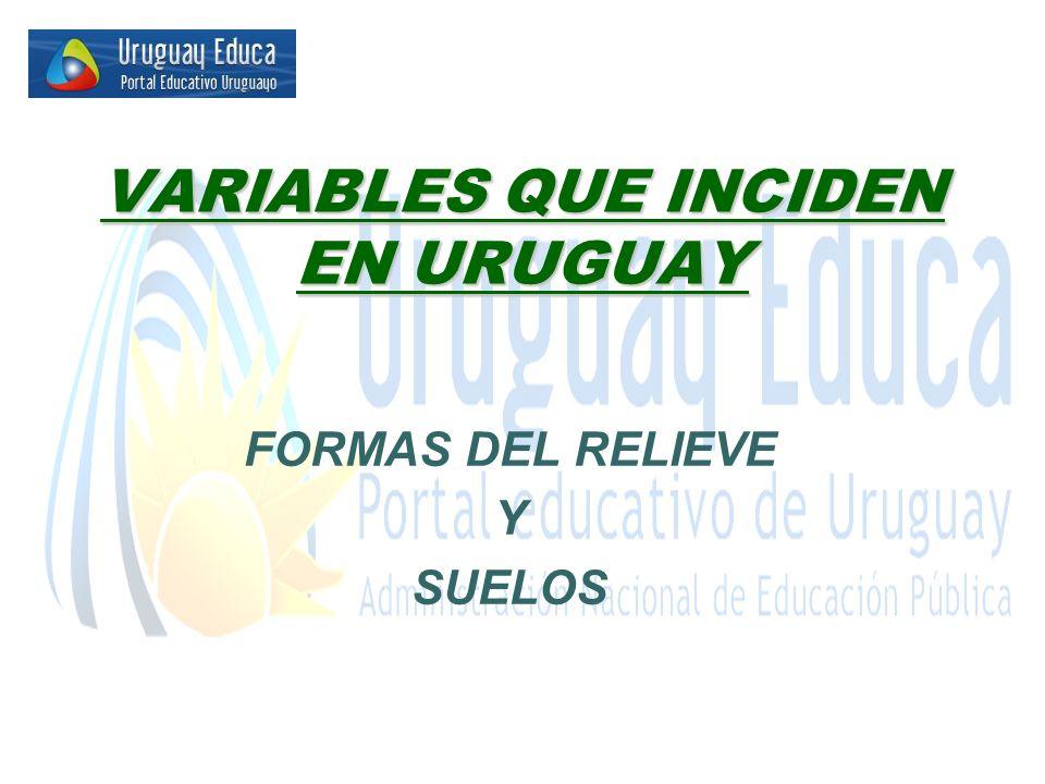 VARIABLES QUE INCIDEN EN URUGUAY FORMAS DEL RELIEVE Y SUELOS