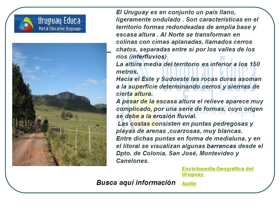 Enciclopedia GeográficaEnciclopedia Geográfica del Uruguay Audio Audio Busca aquí información El Uruguay es en conjunto un país llano, ligeramente ondulado.