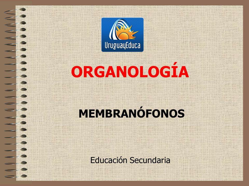 ORGANOLOGÍA MEMBRANÓFONOS Educación Secundaria
