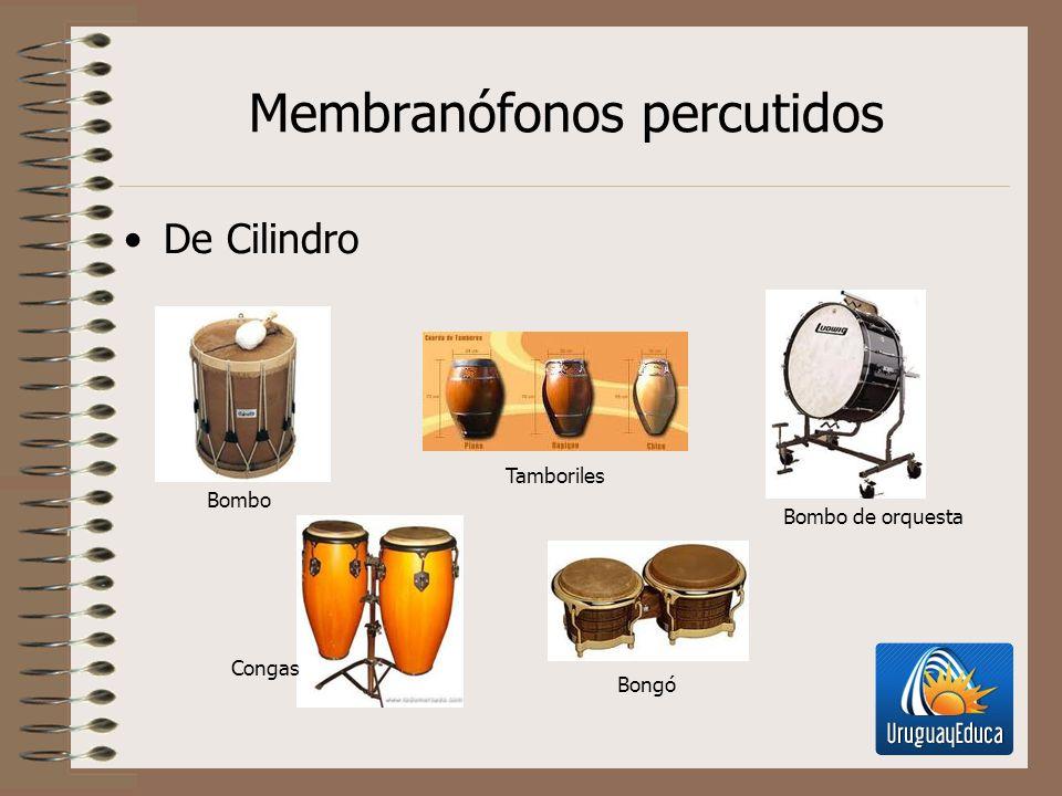 Membranófonos percutidos De Cilindro Bombo Tamboriles Bombo de orquesta Congas Bongó