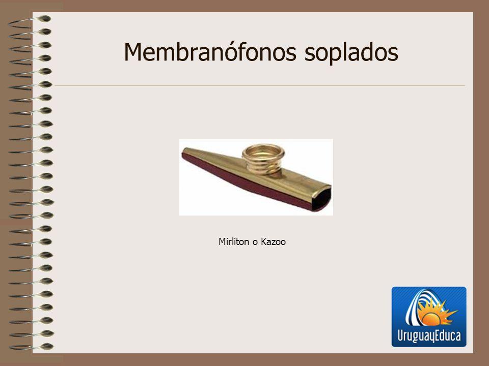 Membranófonos soplados Mirliton o Kazoo