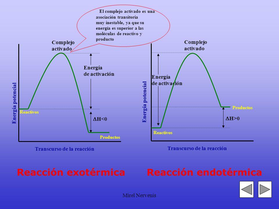 Mirel Nervenis Energía de activación Energía potencial Transcurso de la reacción Complejo activado Reactivos H<0 Energía de activación Transcurso de la reacción Complejo activado Reactivos H>0 Energía potencial Reacción exotérmicaReacción endotérmica Productos El complejo activado es una asociación transitoria muy inestable, ya que su energía es superior a las moléculas de reactivo y producto