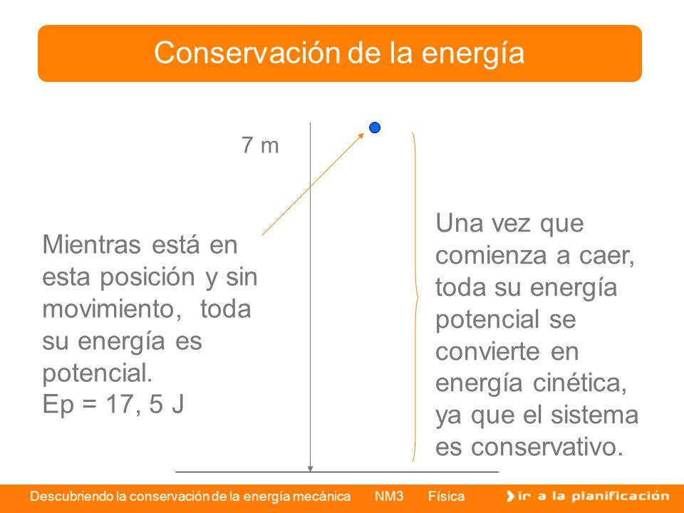 Descubriendo la conservación de la energía mecánica NM3 Física Conservación de la energía 7 m Mientras está en esta posición y sin movimiento, toda su energía es potencial.