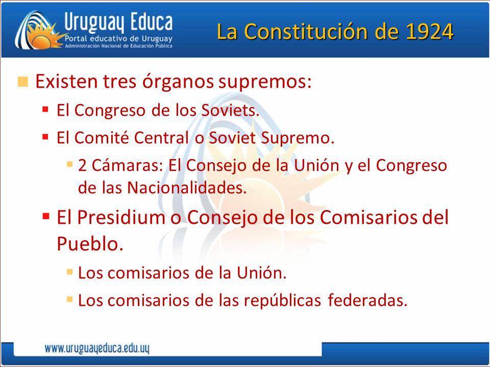 La Constitución de 1924 Existen tres órganos supremos: El Congreso de los Soviets. El Comité Central o Soviet Supremo. 2 Cámaras: El Consejo de la Uni