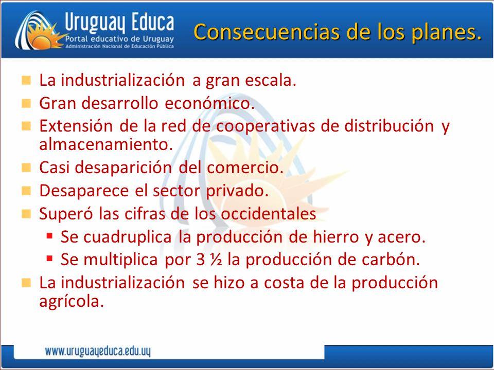 Consecuencias de los planes. La industrialización a gran escala. Gran desarrollo económico. Extensión de la red de cooperativas de distribución y alma