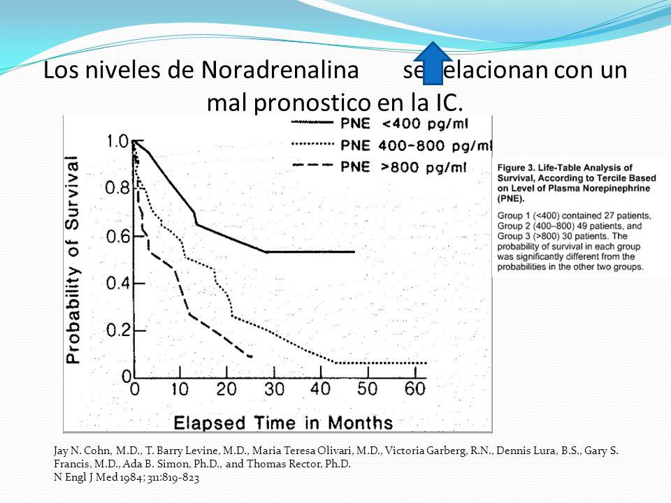 Los niveles de Noradrenalina se relacionan con un mal pronostico en la IC. Jay N. Cohn, M.D., T. Barry Levine, M.D., Maria Teresa Olivari, M.D., Victo