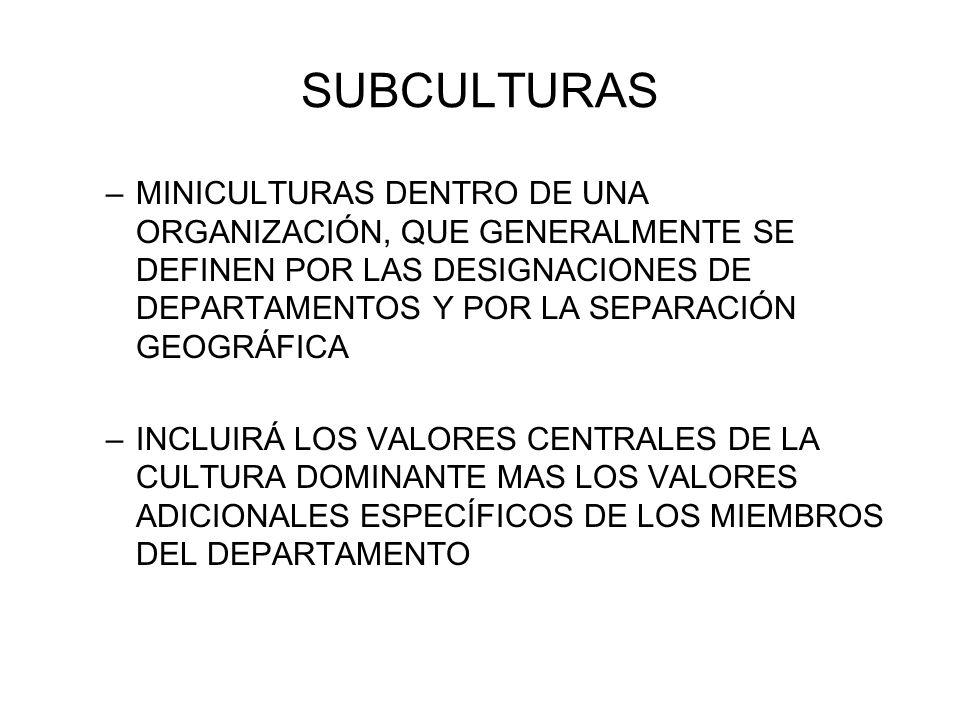 SUBCULTURAS –MINICULTURAS DENTRO DE UNA ORGANIZACIÓN, QUE GENERALMENTE SE DEFINEN POR LAS DESIGNACIONES DE DEPARTAMENTOS Y POR LA SEPARACIÓN GEOGRÁFIC