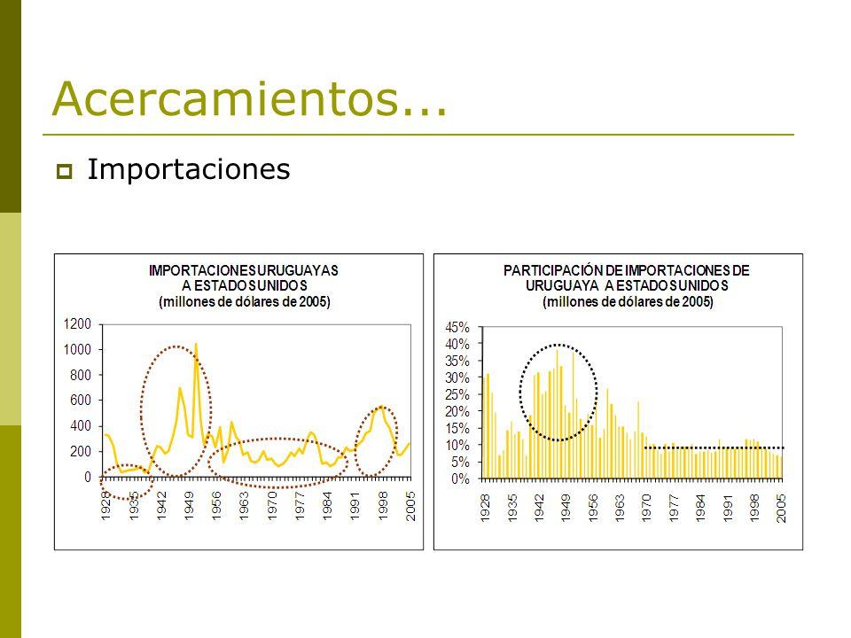 Resumen de la evidencia Síntesis: 2003-2005 (cont.) Interés de Estados Unidos: efectiva necesidad de productos cárnicos que le permitieran cubrir su demanda interna.