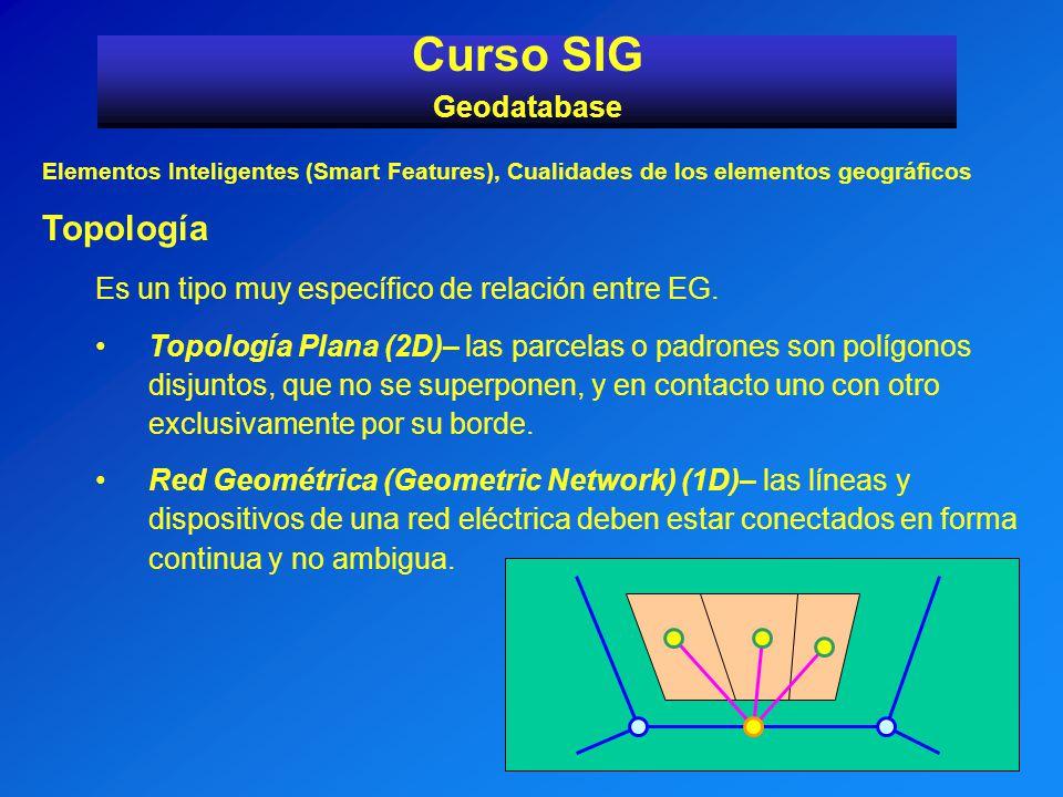 Elementos Inteligentes (Smart Features), Cualidades de los elementos geográficos Topología Es un tipo muy específico de relación entre EG. Topología P