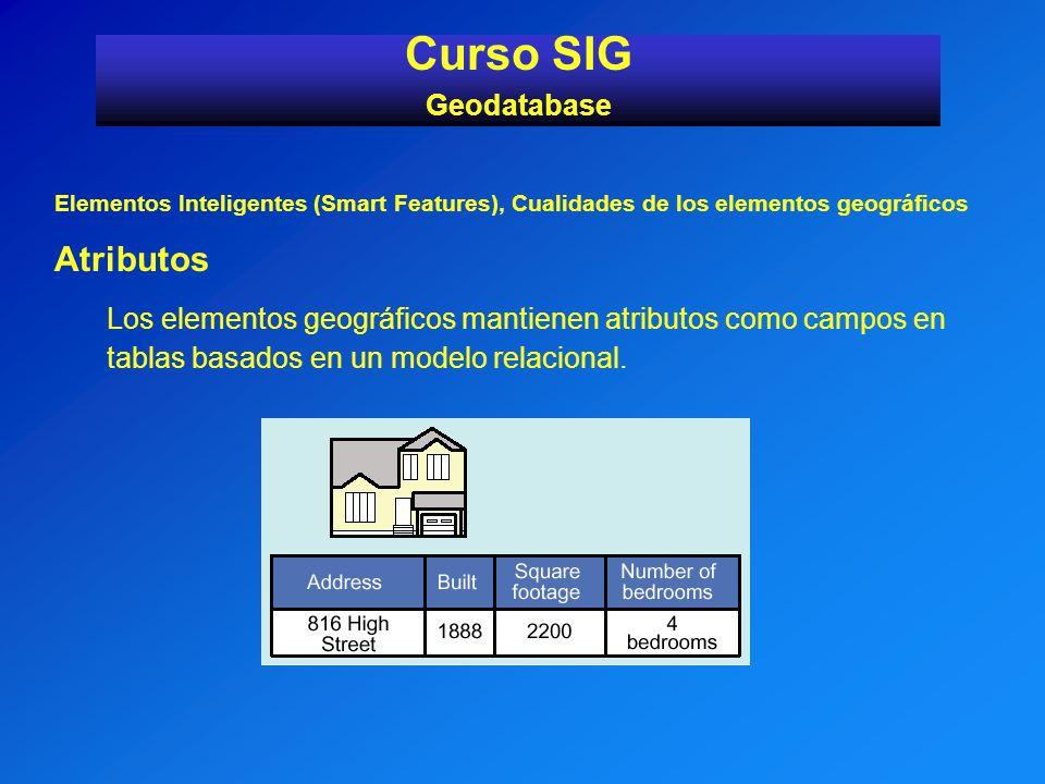 Elementos Inteligentes (Smart Features), Cualidades de los elementos geográficos Atributos Los elementos geográficos mantienen atributos como campos e