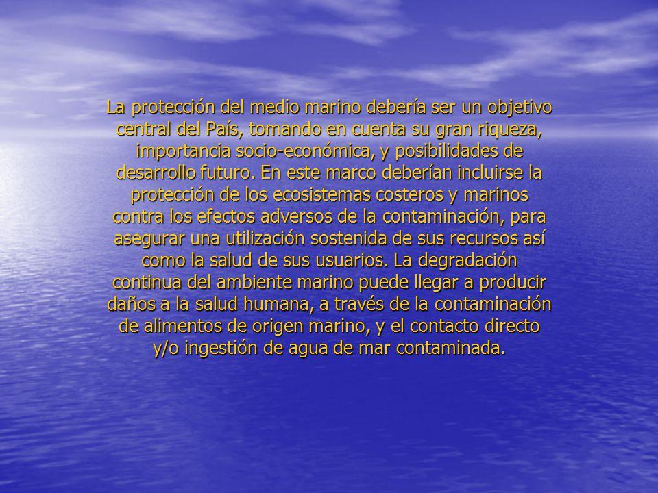 La protección del medio marino debería ser un objetivo central del País, tomando en cuenta su gran riqueza, importancia socio-económica, y posibilidades de desarrollo futuro.