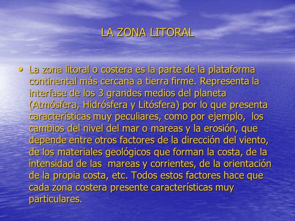 LA ZONA LITORAL La zona litoral o costera es la parte de la plataforma continental más cercana a tierra firme. Representa la interfase de los 3 grande