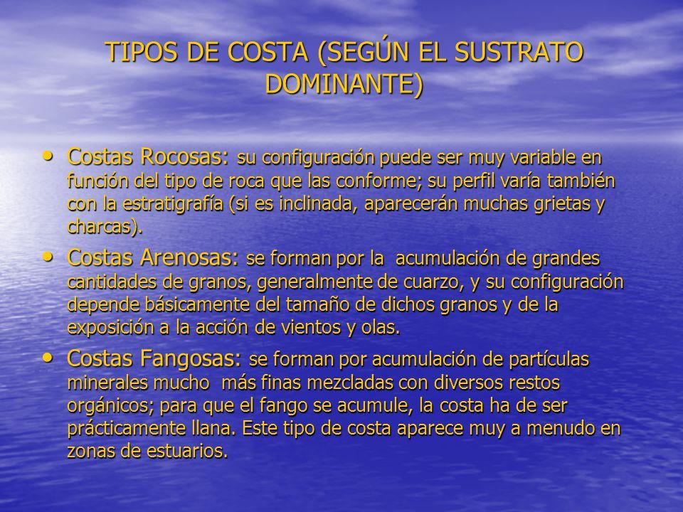 TIPOS DE COSTA (SEGÚN EL SUSTRATO DOMINANTE) Costas Rocosas: su configuración puede ser muy variable en función del tipo de roca que las conforme; su perfil varía también con la estratigrafía (si es inclinada, aparecerán muchas grietas y charcas).