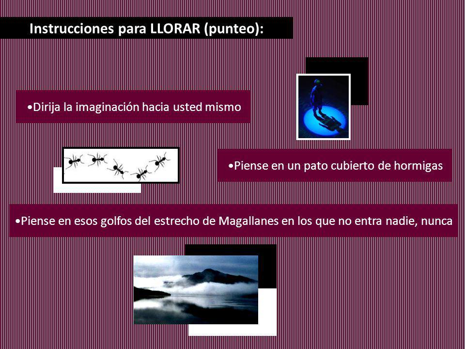 Instrucciones para LLORAR (punteo): Dirija la imaginación hacia usted mismo Piense en un pato cubierto de hormigas Piense en esos golfos del estrecho