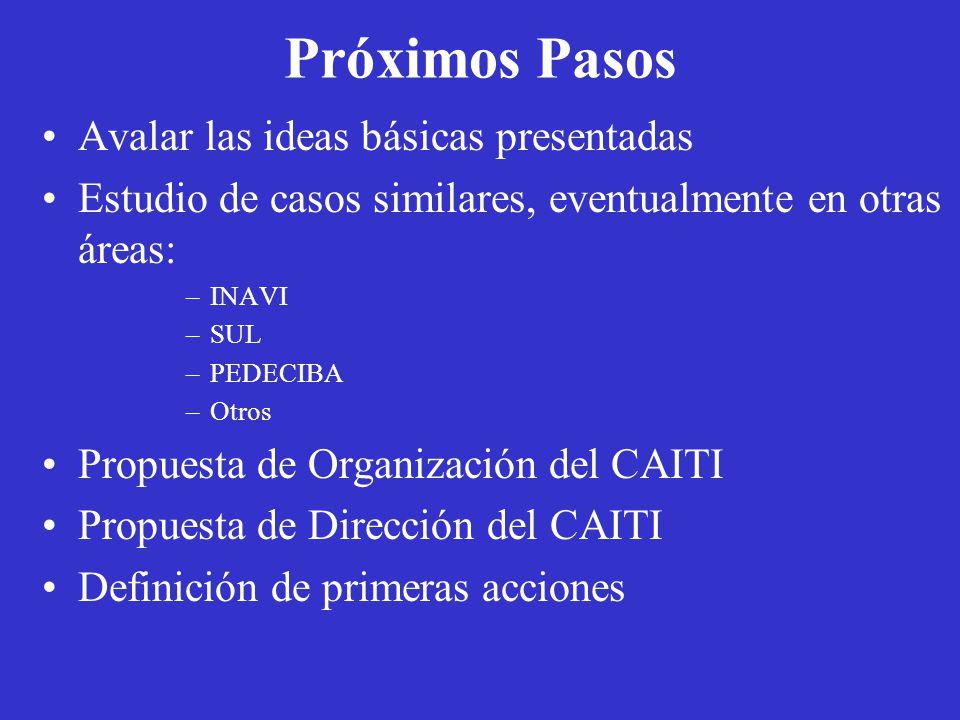 Próximos Pasos Avalar las ideas básicas presentadas Estudio de casos similares, eventualmente en otras áreas: –INAVI –SUL –PEDECIBA –Otros Propuesta de Organización del CAITI Propuesta de Dirección del CAITI Definición de primeras acciones