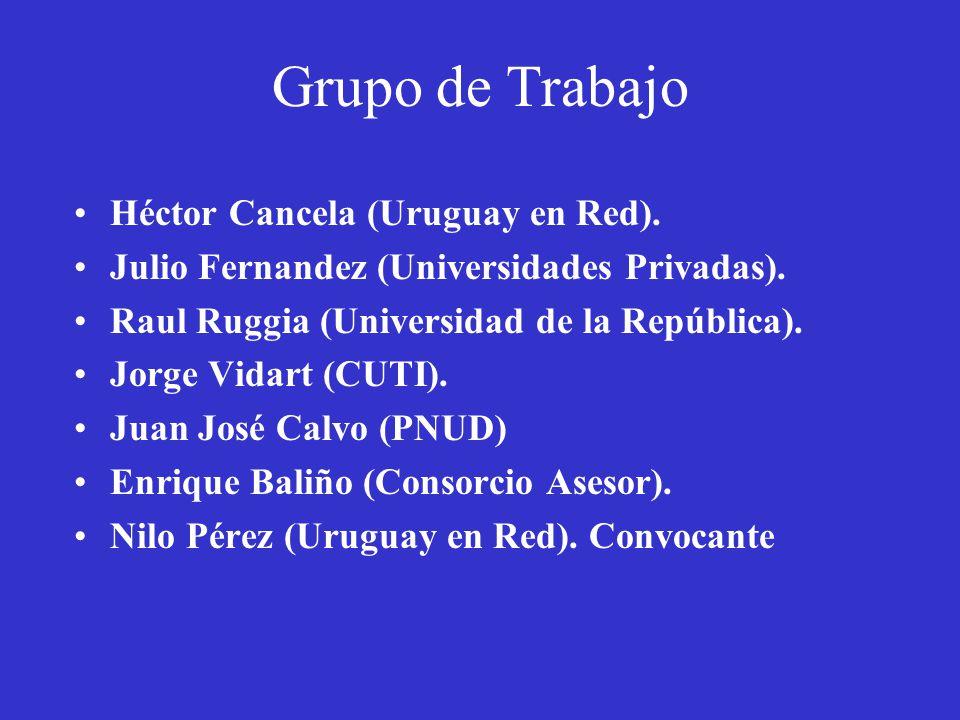 Grupo de Trabajo Organización de trabajo: –Inicio de reuniones: 5 de abril 2002.