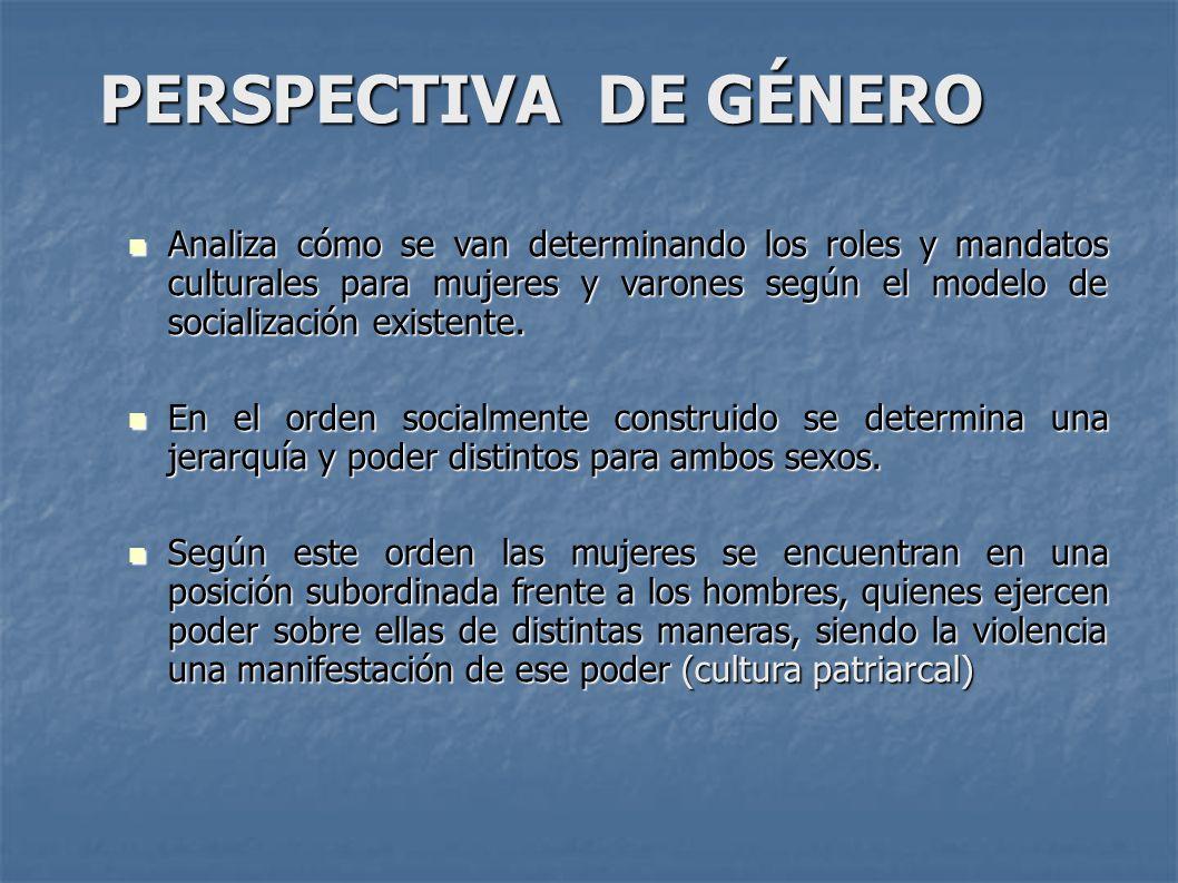 PERSPECTIVA DE GÉNERO Analiza cómo se van determinando los roles y mandatos culturales para mujeres y varones según el modelo de socialización existente.