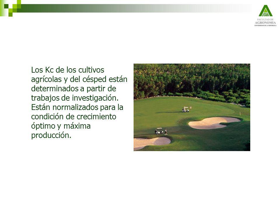Los Kc de los cultivos agrícolas y del césped están determinados a partir de trabajos de investigación. Están normalizados para la condición de crecim