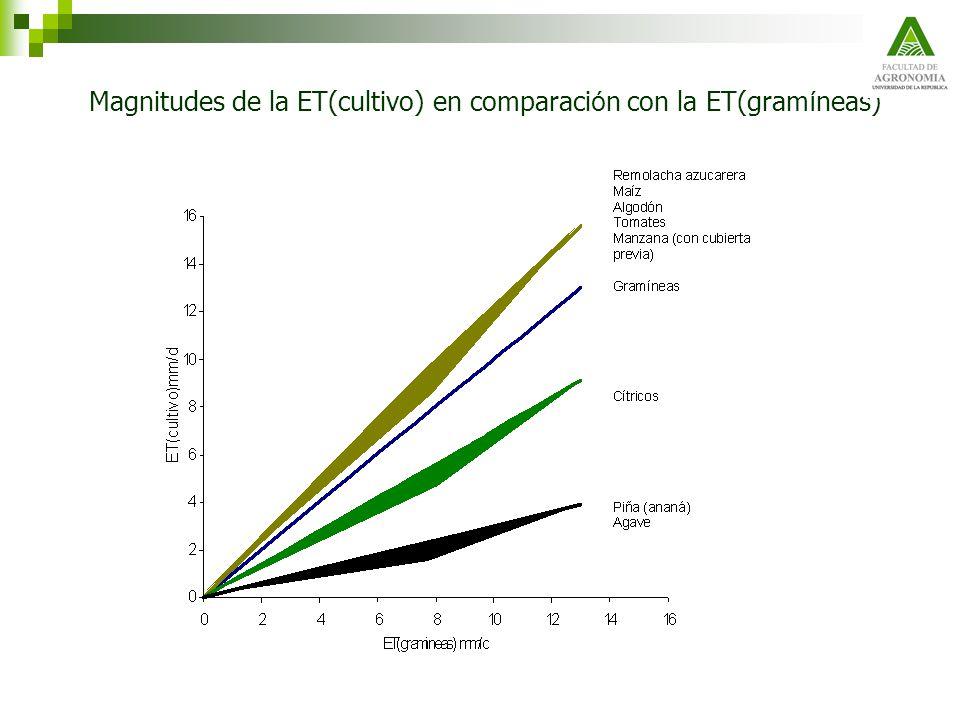 Magnitudes de la ET(cultivo) en comparaci ó n con la ET(gram í neas)