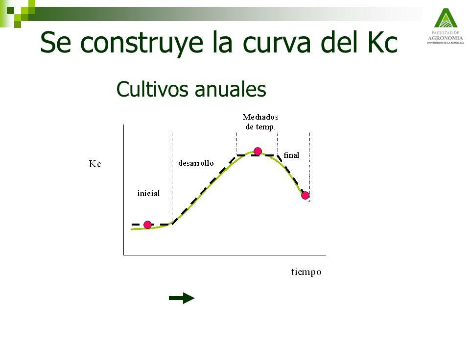 Se construye la curva del Kc Cultivos anuales