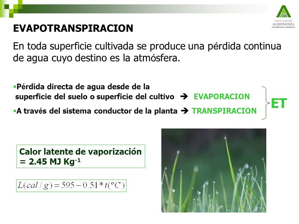 EVAPOTRANSPIRACION En toda superficie cultivada se produce una p é rdida continua de agua cuyo destino es la atm ó sfera. P é rdida directa de agua de