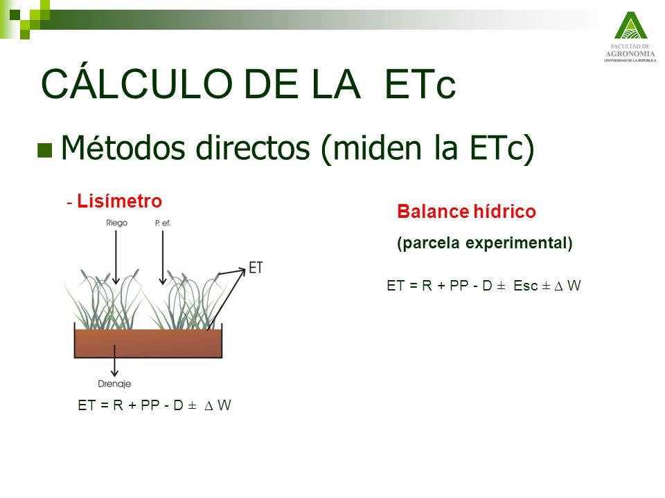 ETo para enero = 5.4 mm d -1 (valor promedio mensual) ETj para enero = 5.4 x 1.4 = 7.6 mm d -1 (dosis neta de riego) El tiempo de riego deberá calcularse de forma de aplicar la dosis bruta de riego.