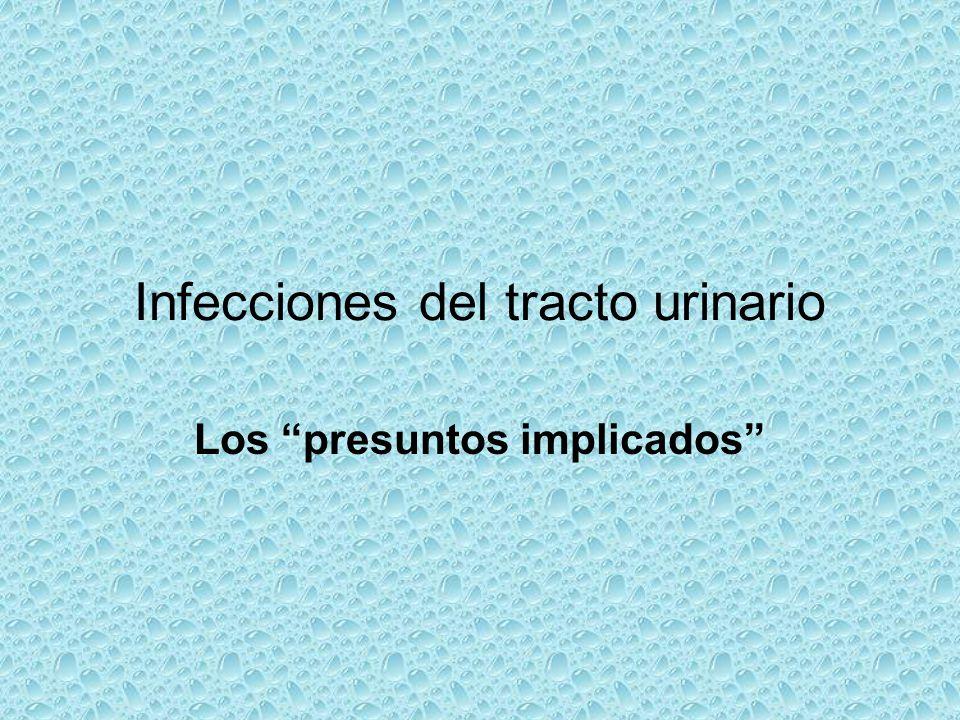 Infecciones del tracto urinario Los presuntos implicados