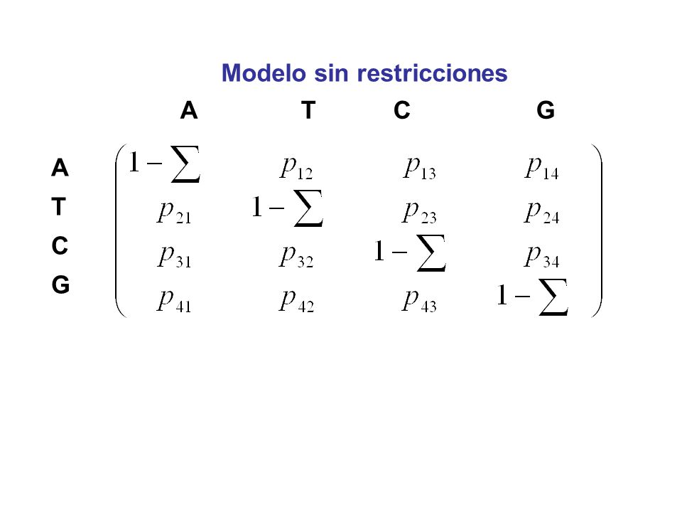 Modelo sin restricciones A T C G ATCGATCG
