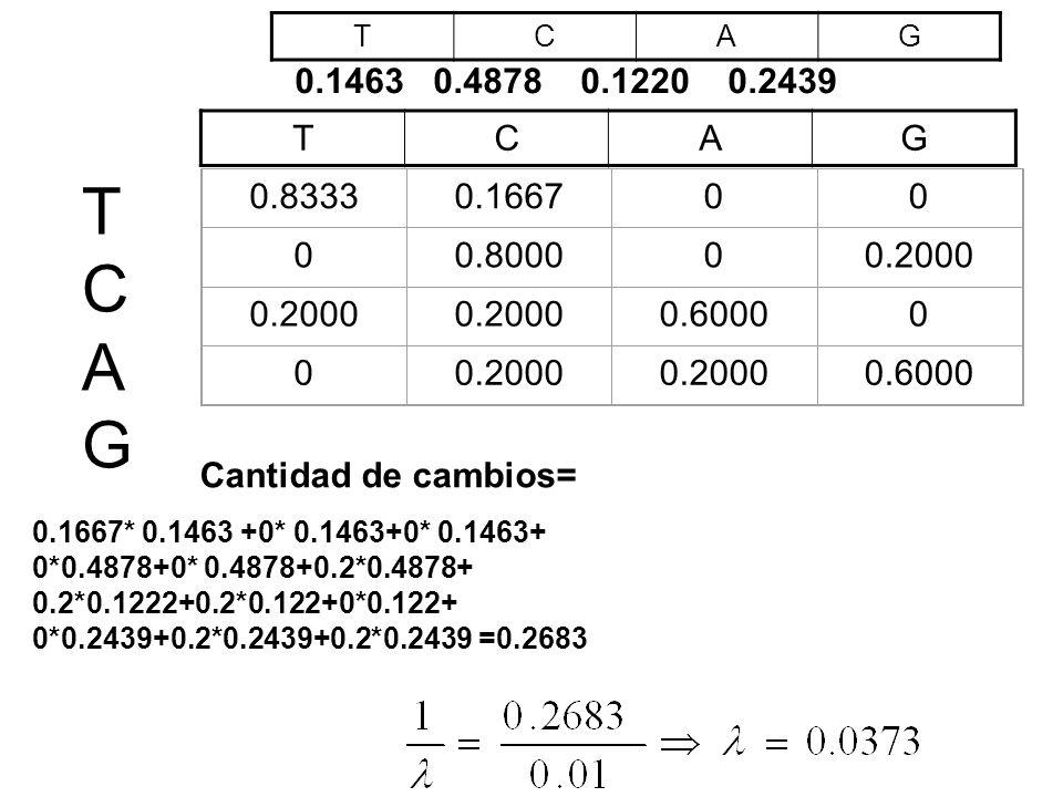0.83330.166700 00.800000.2000 0.60000 00.2000 0.6000 0.1463 0.4878 0.1220 0.2439 TCAG TCAG TCAGTCAG Cantidad de cambios= 0.1667* 0.1463 +0* 0.1463+0*