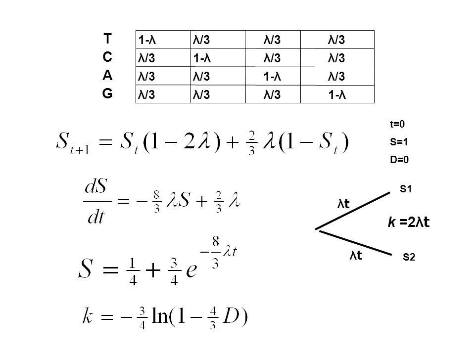 t=0 S=1 D=0 1-λλ/3 G 1-λλ/3 A 1-λλ/3 C 1-λ T S1 S2 λtλt λtλt k =2λ t