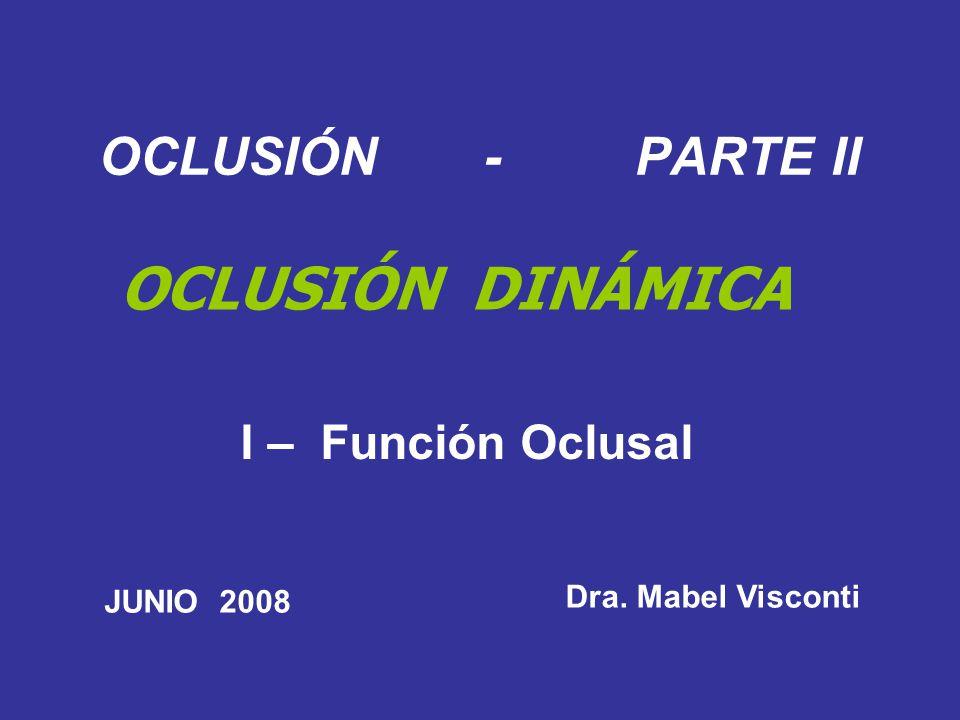 OCLUSIÓN - PARTE II OCLUSIÓN DINÁMICA I – Función Oclusal Dra. Mabel Visconti JUNIO 2008