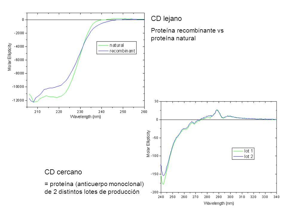 CD lejano Proteína recombinante vs proteína natural CD cercano = proteína (anticuerpo monoclonal) de 2 distintos lotes de producción