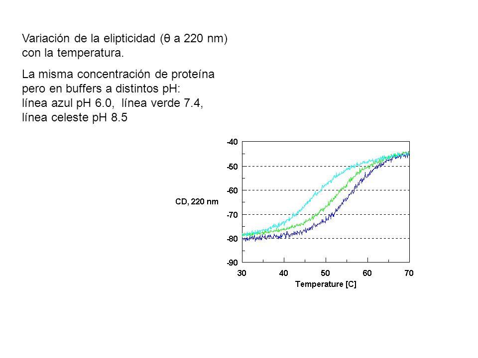 Variación de la elipticidad (θ a 220 nm) con la temperatura. La misma concentración de proteína pero en buffers a distintos pH: línea azul pH 6.0, lín