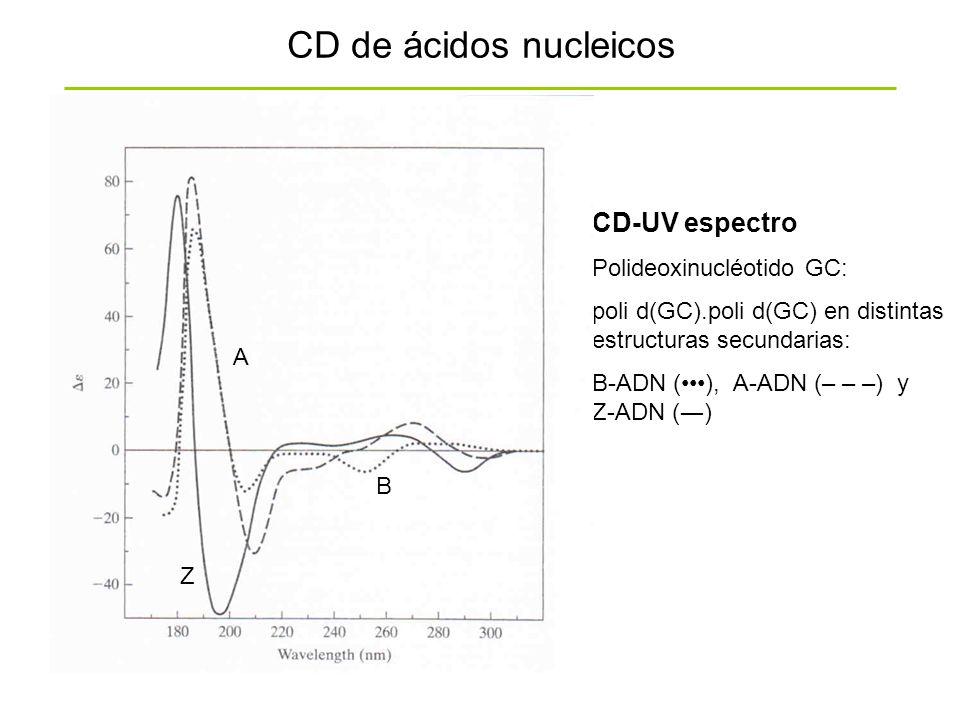 CD-UV espectro Polideoxinucléotido GC: poli d(GC).poli d(GC) en distintas estructuras secundarias: B-ADN (), A-ADN (– – –) y Z-ADN () CD de ácidos nuc
